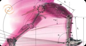 Analyse biomécanique à la clinique posturale